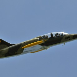 L-39 Combat Jet Flight Experience