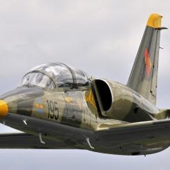 L-39 Combat Jet Flight