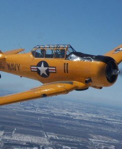 Texan T-6 Chicago