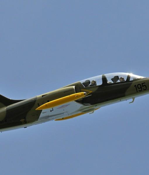L-39 Combat Flight