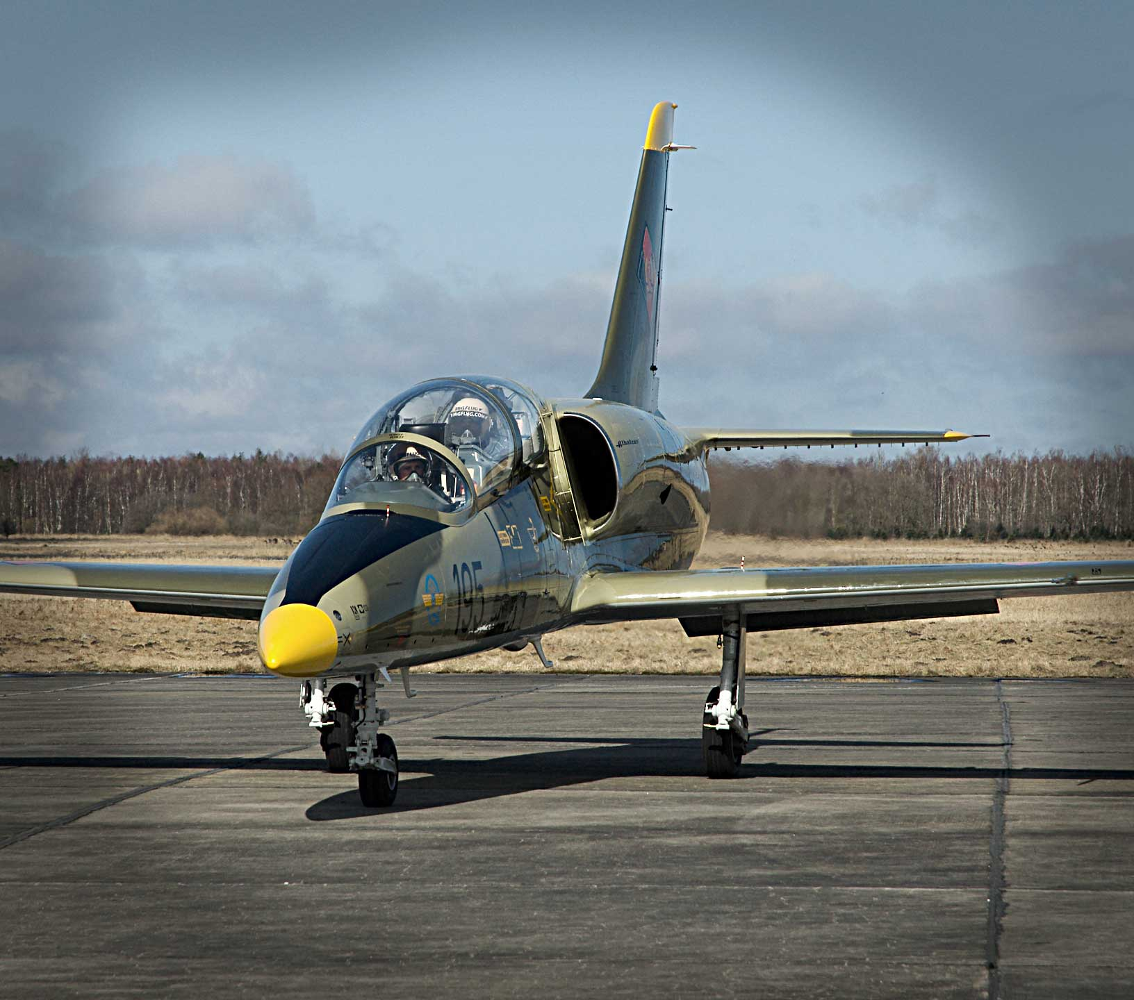 L-39 Fighter Jet Ride Along. Fighter Rides At Attractive
